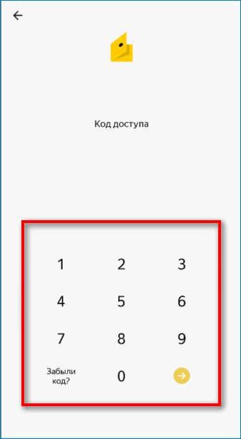 Вход в приложение Яндекс.Деньги